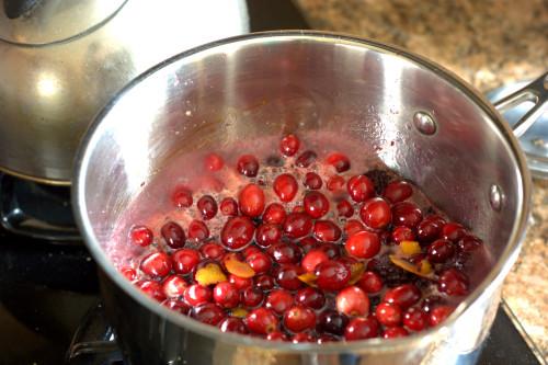 Blackberry Habiscus Cranberry